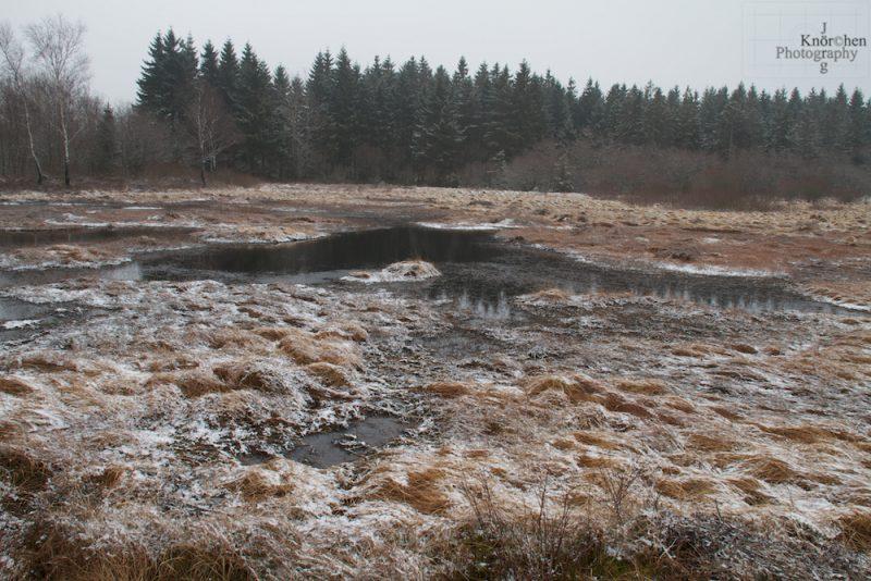Moor und Heide ringsherum