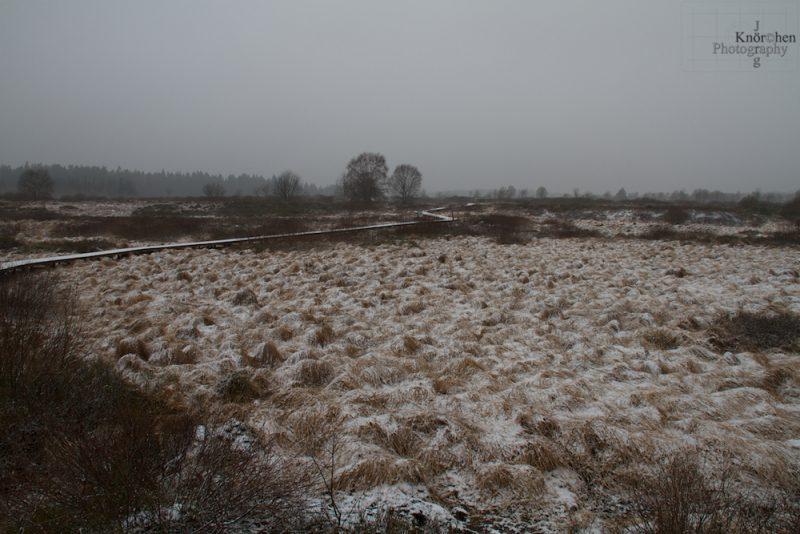 Karge Landschaft im Herbst-Winter