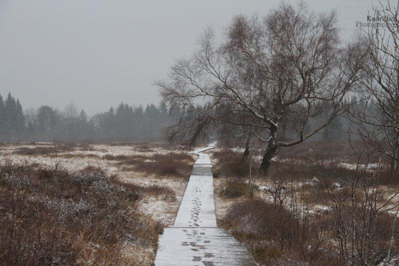 Laufstege zum Schutz der Natur