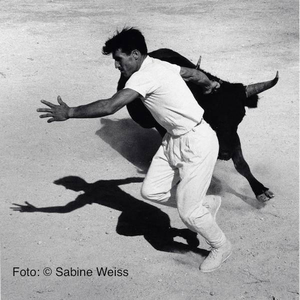 15 Sabine Weiss, Frankreich, 1960