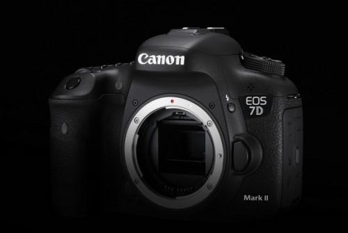 Design Cut EOS 7D Mark II