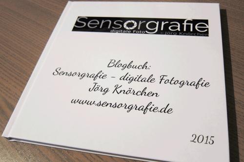 Blogbuch für Sensorgrafie von pixelSohpie