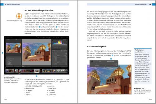 Einstieg in Lightroom 6 und CC: Bilder bearbeiten und organisieren: Entwickeln-Modul