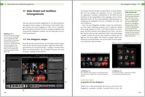 Einstieg in Lightroom 6 und CC: Bilder bearbeiten und organisieren: Web-Modul