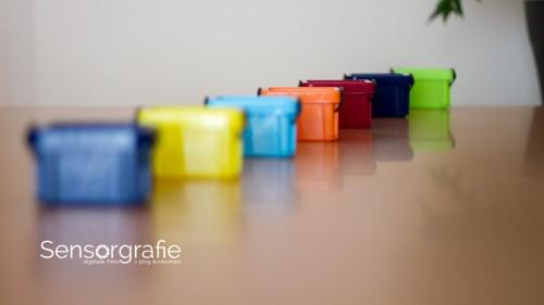 Im Fotokurs: Blendenvorwahl und Schärfentiefe selbst ausprobieren!