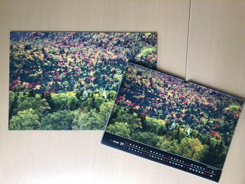 Fotos auf Acryl, Alu-Dibond und Forex von ZOR.com