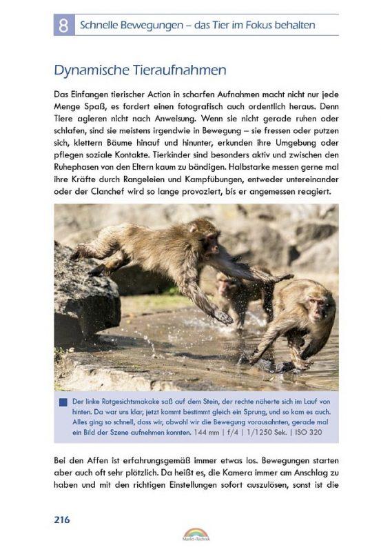 Beispielhafte Seite 216 © Markt+Technik
