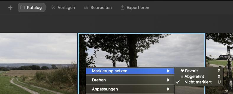 Der Luminar AI Katalog und seine Markierungsmöglichkeiten für Bilder